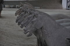 ` XI лошади терракоты Стоковые Фотографии RF
