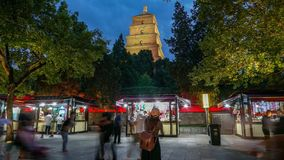 Xi `, China Timelapse selvagem gigante do pagode do ganso video estoque