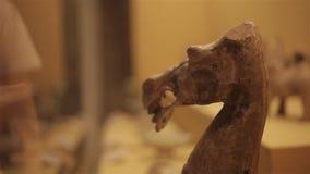 XI'AN Cina 30 maggio 2012: Esposizione antica cinese della reliquia culturale nel museo di Shaanxi stock footage
