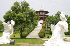 XI. 'datang furong ogród w Chiny zdjęcie royalty free