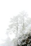 XI montagne Chine de neige de Ling Photos stock