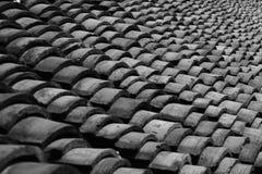 XI toit de Tang Watertown Photos libres de droits