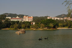 Xiamen. Fujian Xiame university culture education campus construction travel life live fun lake royalty free stock image