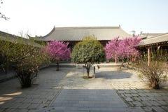 Xian beilin muzeum zdjęcia royalty free
