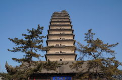 Xian Kina liten wild gåspagoda Arkivbilder