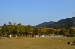 XiangHu See Lizenzfreie Stockbilder