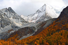 XianuoDuoji snow mountain in Yading Stock Image