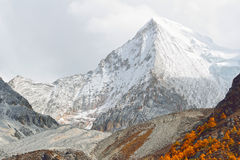 XianuoDuoji snow mountain in Yading Stock Photography