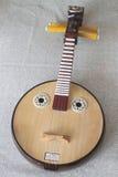 Xiaoruan, Geplukte Instrumenten Stock Fotografie