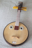 Xiaoruan, Plucked Instruments Stock Photography