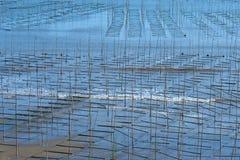 Xiapu Beach of Fujian, China. A stretch of beach at Xiapu County of Fujian Province in South China Royalty Free Stock Images