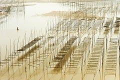 Xiapu Beach of Fujian, China. A stretch of beach at Xiapu County of Fujian Province in South China Stock Images