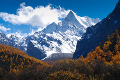 Xiaruoduoji Peak in Yading Nature Reserve. Xiaruoduoji or Chanadorje Peak in autumn. It locate in Yading Nature Reserve. Daocheng County, Sichuan Province, China Stock Photography