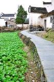 Xidi Village Garden Royalty Free Stock Photography