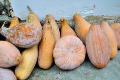 Xidi Village pumpkin Stock Photo