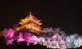 XiJinDu Royaltyfri Foto