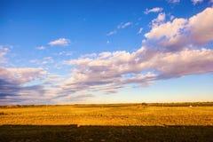 Xilinguole obszaru trawiastego scena Obraz Royalty Free