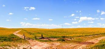 Xilinguole obszaru trawiastego scena Obrazy Royalty Free