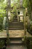 Xilitla Royalty Free Stock Photography