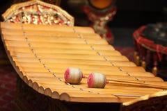 Xilofono di legno del soprano Immagini Stock