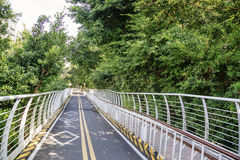 Xindian Creek bicycle lanes. The bicycle with the railings with the trees in the park stock photos