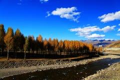 Xinduqiao, ein photographer& x27; s-Paradies Stockfotos