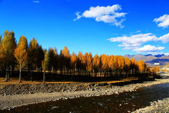 Xinduqiao, ein photographer& x27; s-Paradies Lizenzfreie Stockfotos
