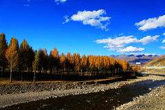 Xinduqiao, a photographer's paradise. The autumn beauty of Qinghai Tibet Plateau , located in the southwest of Sichuan Province, China stock photos
