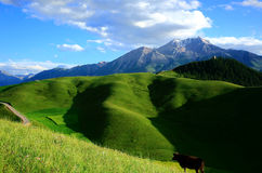 Xining Thatcher Mountain scenery stock images