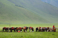 Xinjiang Stockbild