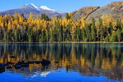 Xinjiang, the beautiful scenery of kanas Royalty Free Stock Photos