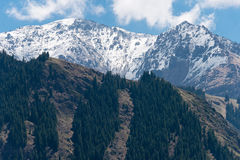 XINJIANG, CHINA - 9 de mayo de 2015: Montaña de la nieve en el lago heaven de T Fotografía de archivo libre de regalías