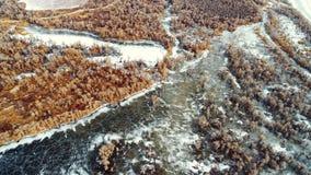 Xinjiang, China: Primavera de la germinación del desierto después del hielo que derrite en el río Tarim foto de archivo