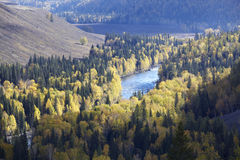Xinjiang, china: river valley Royalty Free Stock Photo
