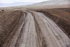 Xinjiang, china: road into the mountains Royalty Free Stock Photos