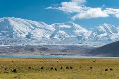 XINJIANG CHINY, Maj, - 21 2015: Karakul jezioro sławny krajobraz zdjęcia royalty free