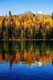 Xinjiang det härliga landskapet av kanas Royaltyfri Foto