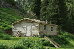 Xinjiang forest cabins Stock Photography