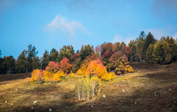 Xinjiang Hemu village scenery Stock Images