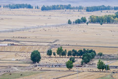 Xinjiang Ranch. Xinjiang mainly in mountain pastures. Most distributions in the South to the foothills of the tianshan mountains, where plenty of water vapor Royalty Free Stock Image