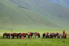 Xinjiang Stock Image