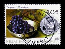 Xinomavro-Wein, Mazedonien, Landwirtschaft serie, circa 2005 Lizenzfreies Stockfoto