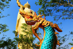 Xishuangbanna , Yunnan, China Royalty Free Stock Photo