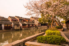 Xitang Ancient Watertown scenery in the morning stock photography