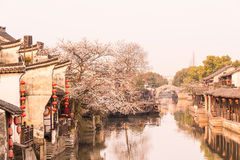 Xitang Ancient Watertown scenery in the morning royalty free stock photo