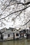 Xitang, una città dell'acqua della Cina. Fotografia Stock Libera da Diritti
