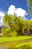 Xitang water Town China. Weeping wilow trees and Chinese style buildings and a dramatic sky in Xitang town in Jiashan county in Zhejiang province China royalty free stock photography
