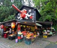 Xitou gigantisk by, Taiwan Arkivbild
