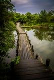 Xixi wetland Stock Image