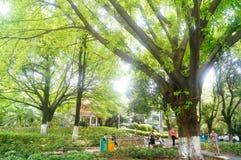 Xixiang Park Stock Images